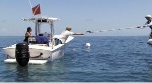 Team OCEAN educates boaters