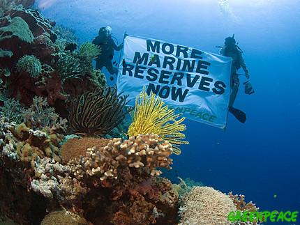 Apo Island Marine Reserve in central Philippines