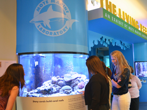 """Living Reef"" Exhibit at Eco-Discovery Center"