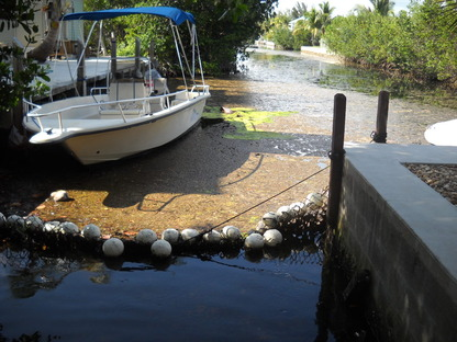 Canal Restoration is Needed