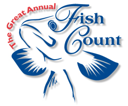 The Great Annual Fish Count