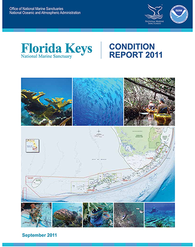2011 Sanctuary Condition Report