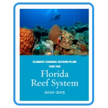 Climate Change Action Plan for the Florida Reef System