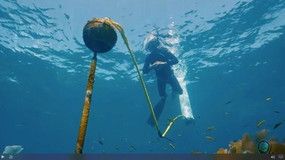 Stories from the Blue: Florida Keys Buoy Team